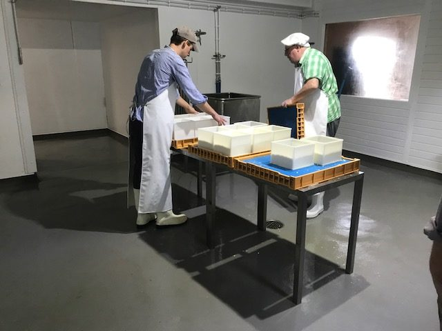 Food Grade Anti-Slip Flooring – the key to a safer working environment