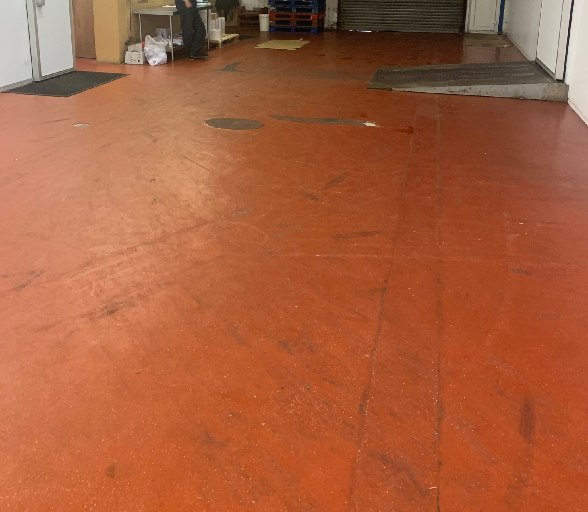 screed services